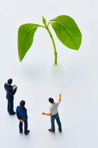 植物の葉とミニチュアの人の写真素材 [FYI03815785]