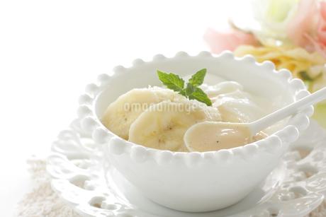 バナナと煉乳のヨーグルトの写真素材 [FYI03816052]
