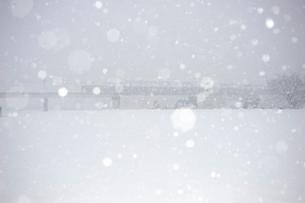 多摩川雪景色の写真素材 [FYI03816142]