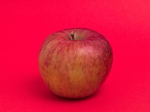 リンゴ フジの写真素材 [FYI03816158]