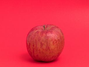 リンゴ フジの写真素材 [FYI03816160]