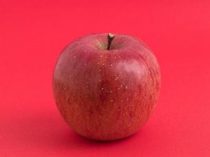 リンゴ フジの写真素材 [FYI03816168]