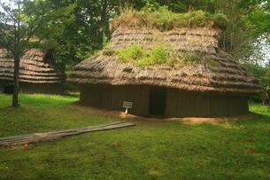 是川遺跡 竪穴住居の写真素材 [FYI03816339]