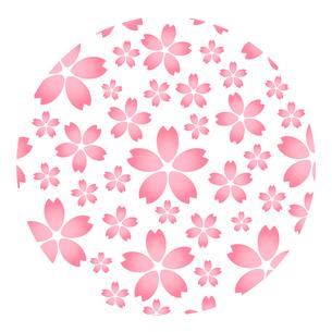 桜模様のイラスト素材 [FYI03816763]