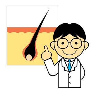 毛根の説明をする医師のイラスト素材 [FYI03816800]
