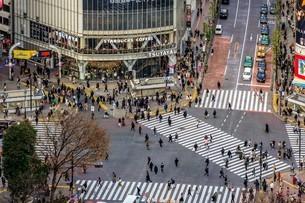 渋谷スクランブル交差点を俯瞰の写真素材 [FYI03816907]