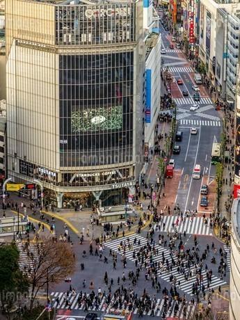 渋谷スクランブル交差点を見下ろすの写真素材 [FYI03816908]