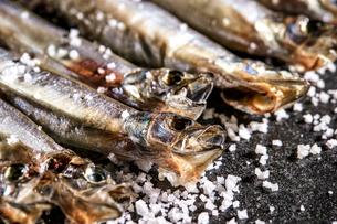 乾燥小魚の写真素材 [FYI03816986]