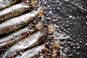 乾燥小魚の写真素材 [FYI03816988]