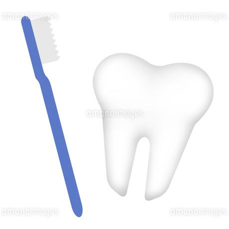 歯と歯ブラシのイラスト素材 [FYI03817109]