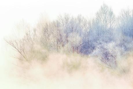 毛嵐の写真素材 [FYI03817431]