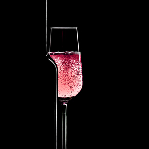 Champagne wine glass on black background.Festive and party concept.の写真素材 [FYI03817489]