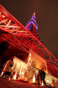 東京タワーの夜景の写真素材 [FYI03817652]