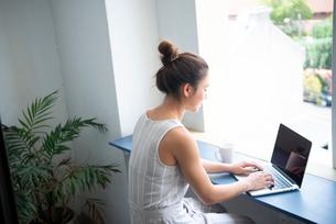 ノートパソコンで作業をしている女性の写真素材 [FYI03817842]
