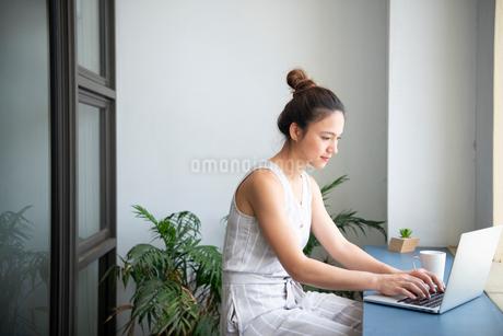 ノートパソコンで作業をしている女性の写真素材 [FYI03817850]