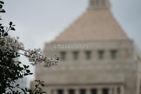 国会議事堂と曇天の空の写真素材 [FYI03817939]