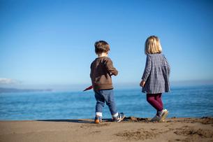 砂浜で遊ぶ男の子と女の子の後ろ姿の写真素材 [FYI03820216]