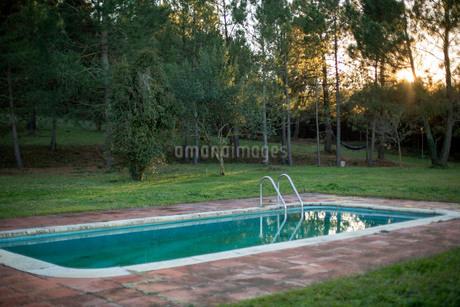 森林の側にあるプールの写真素材 [FYI03820220]