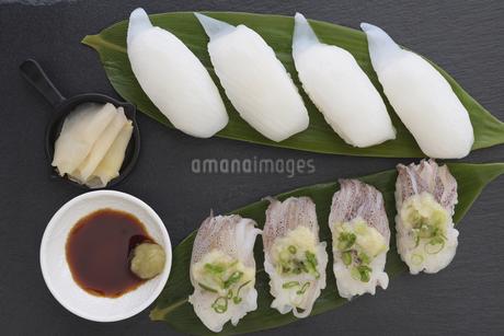 イカの握り寿司の写真素材 [FYI03820226]