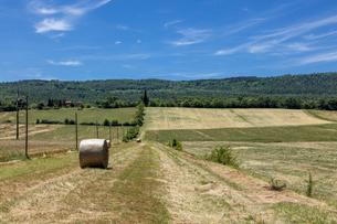 イタリア、トスカーナの風景の写真素材 [FYI03820271]