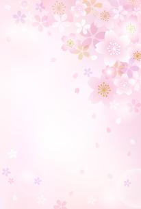 桜背景 ハガキテンプレートのイラスト素材 [FYI03820536]