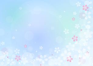 桜のイラストの背景イメージ(横:全体)のイラスト素材 [FYI03820584]