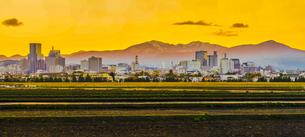 仙台市都心の街並みと夕景の写真素材 [FYI03820993]