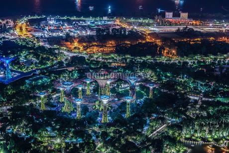 マリーナ・ベイ・サンズ展望台からの夜景(シンガポール)の写真素材 [FYI03821001]
