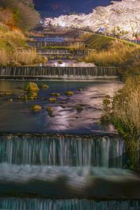 宮城野早川堤の桜と砂防の写真素材 [FYI03821025]