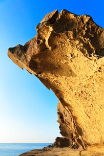 世界遺産熊野古道 鬼ヶ城の写真素材 [FYI03821180]