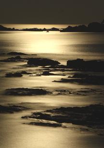 月光に染まる南紀の海岸の写真素材 [FYI03821282]