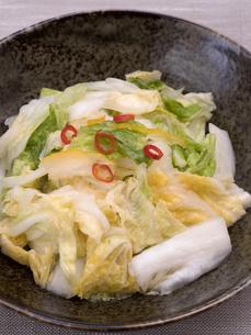 白菜の浅漬けの写真素材 [FYI03821611]