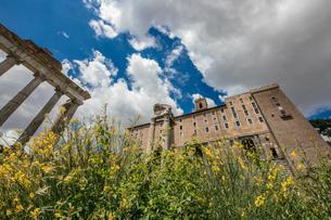 ローマ フェロロマーノの写真素材 [FYI03821735]