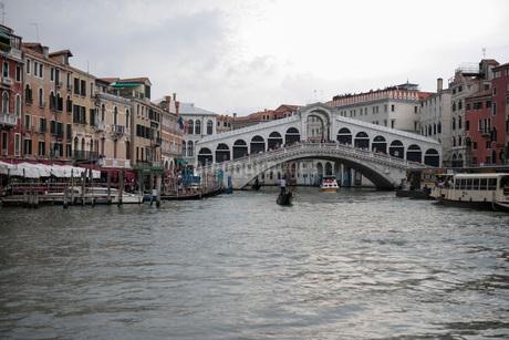 イタリア ヴェネチア リアルト橋の写真素材 [FYI03821741]