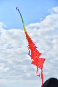 青空に連凧の写真素材 [FYI03821766]