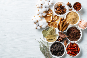 Set of spices on white background.Top view.Organic concept.の写真素材 [FYI03821923]