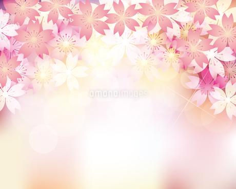 桜 春 背景のイラスト素材 [FYI03821950]