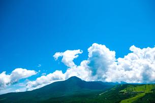 車山高原より白樺高原と夏空の写真素材 [FYI03822000]
