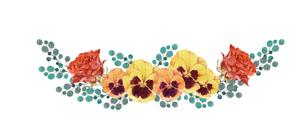薔薇とパンジー水彩画のイラスト素材 [FYI03822045]