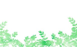 花壇のシルエット水彩テクスチャーのイラスト素材 [FYI03822049]
