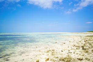 カイジ浜の写真素材 [FYI03822105]