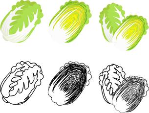 白菜の可愛いアイコンのイラスト素材 [FYI03822122]