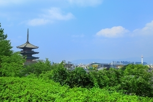八坂の塔と京都市街の写真素材 [FYI03822304]