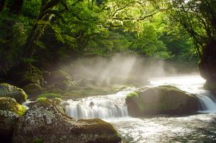 菊池渓谷の写真素材 [FYI03822717]