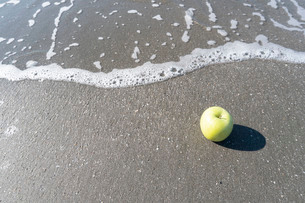 波打ち際の青りんごの写真素材 [FYI03822722]