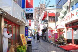 仙川の写真素材 [FYI03822918]