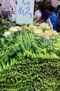 香港・北角(ノースポイント)の市場で売られる香港人が大好きなカイラン菜(祭心)の写真素材 [FYI03822993]