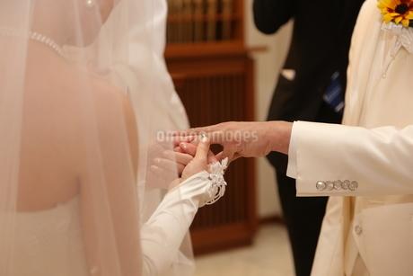 結婚式の写真素材 [FYI03823175]
