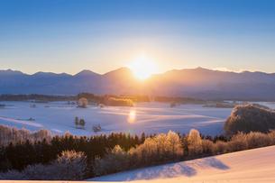 新栄の丘より望む朝日の写真素材 [FYI03823527]
