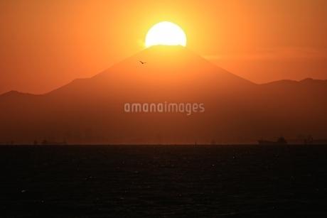 ダイアモンド富士の写真素材 [FYI03823531]